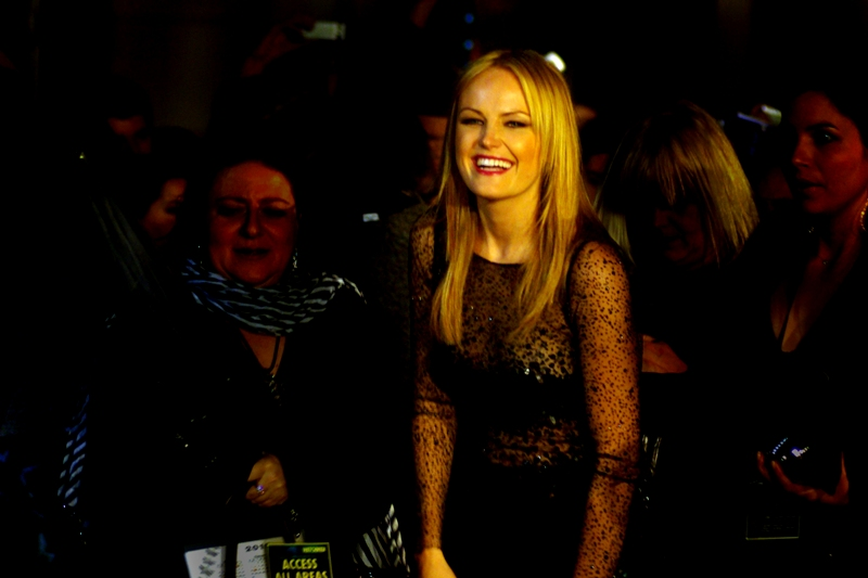 """Malin Akerman, the thinking man's Metaphor. She plays 'good looking female in lycra' on the movie poster. She's from Sweden (the actress, that is). IMDB calls her character """"Silk Spectre II"""" (excellent - I like sequels)"""