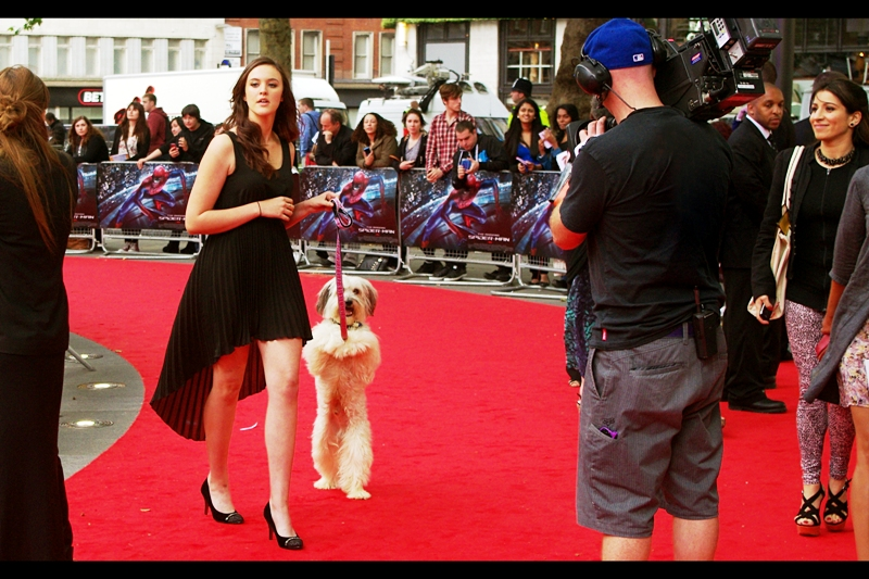 Late arrival. She and her performing dog won Britain's Got Talent this year. I'd say something derisive ordinarily, but the dog was pretty talented and well-trained.