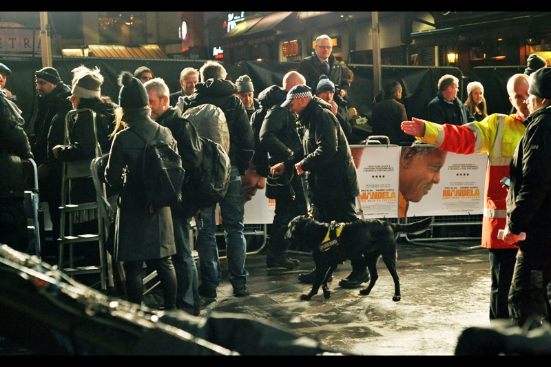 This being a royal premiere, security was much tighter than usual - police, high-viz security, discreet-tuxedoed security, actual agents, plus the royals' own retinue AND a sniffer dog. It's not like you can even attempt to get close to Johnny Depp or Tom Cruise at a regular premiere, but at a Royal premiere I guess it's probably best to avoid even making casual eye-contact with VIPs.