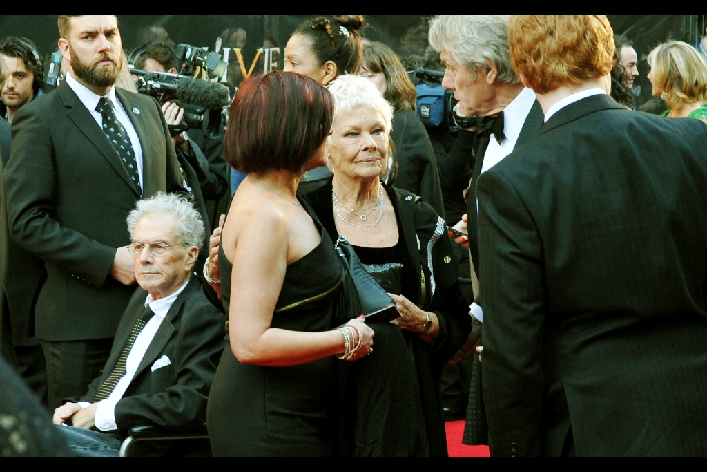 Outstanding news : I recognise Dame Judi Dench because she's been in James Bond, and also her frown could melt Sir Laurence Olivier Statues at ninety paces.