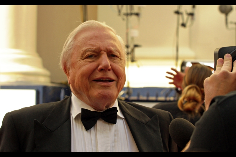 """Human. Bipedal. Opposable thumb. Unfortunate lack of hair on head"" . Despite my well-founded fear that I'll recognise next to nobody at this event, the first meaningful arrival is a Major Name : Naturalist and Documentarian Sir David Attenborough. And he's done a fine job of categorising me."