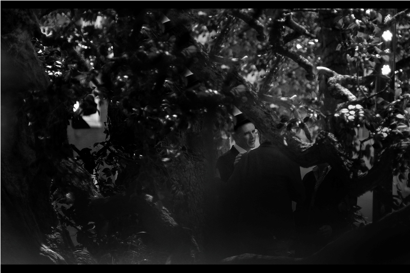 Somewhere in this forest of branches and vines is the even more formally-hatted Mark Rylance, this year's Oscar and Bafta Winner for Best Supporting Actor, coincidentally also in a Steven Spielberg film - the excellent 'Bridge of Spies'. I last photographed him  at this year's TV Baftas , I believe.