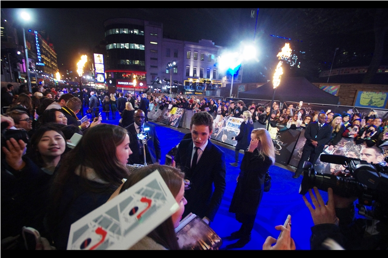 Eddie Redmayne has come to our area and fortunately for those who fear being in an enclosed space with spurned women, he is cheerfully signing and posing for selfies and effortlessly dodging marriage proposals and gifts of children and what have you.