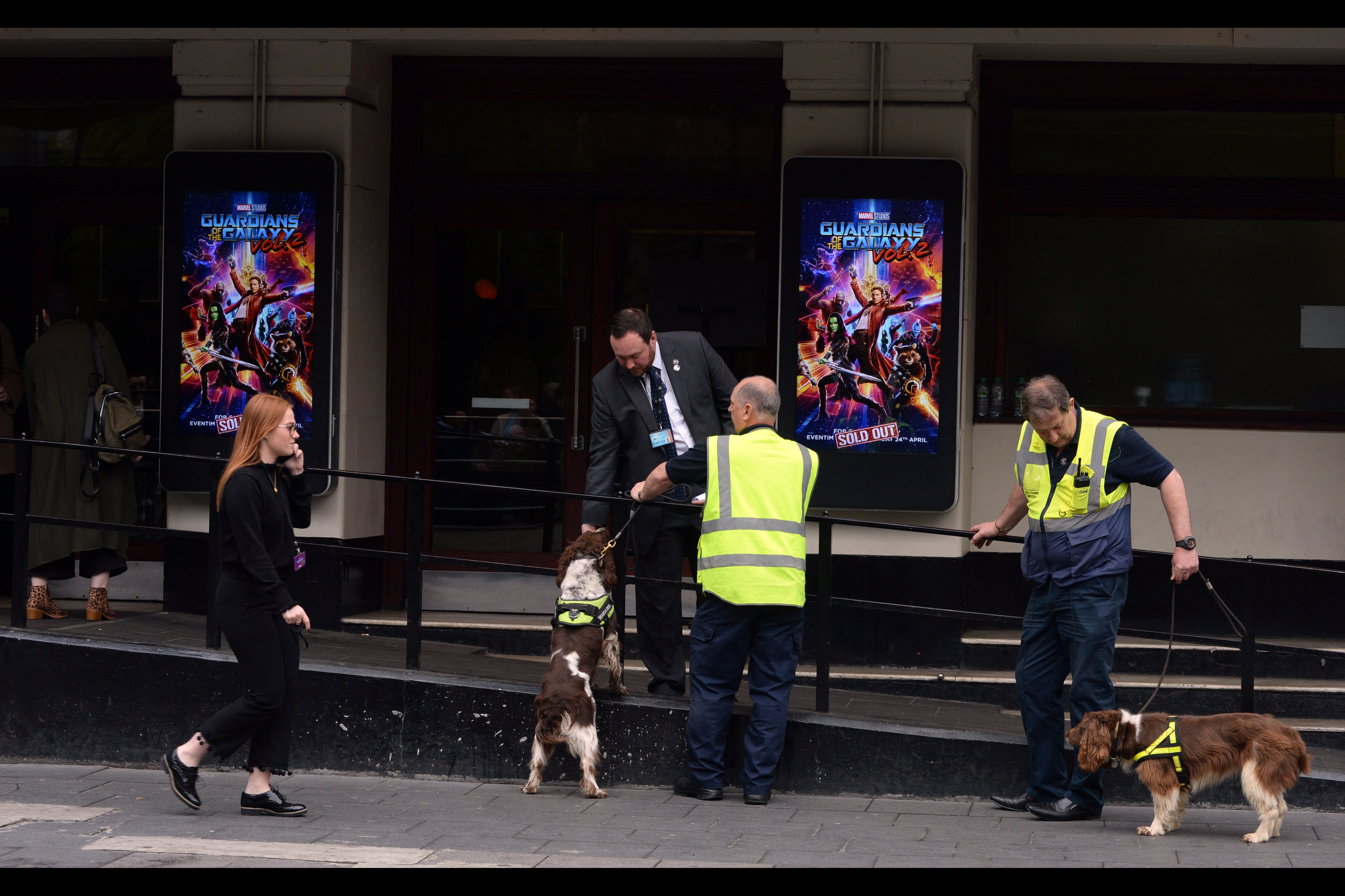 """""""The sniffer dogs? A diversion.""""  Either that, or Disney mistrusts event ticketholders even less than fans."""