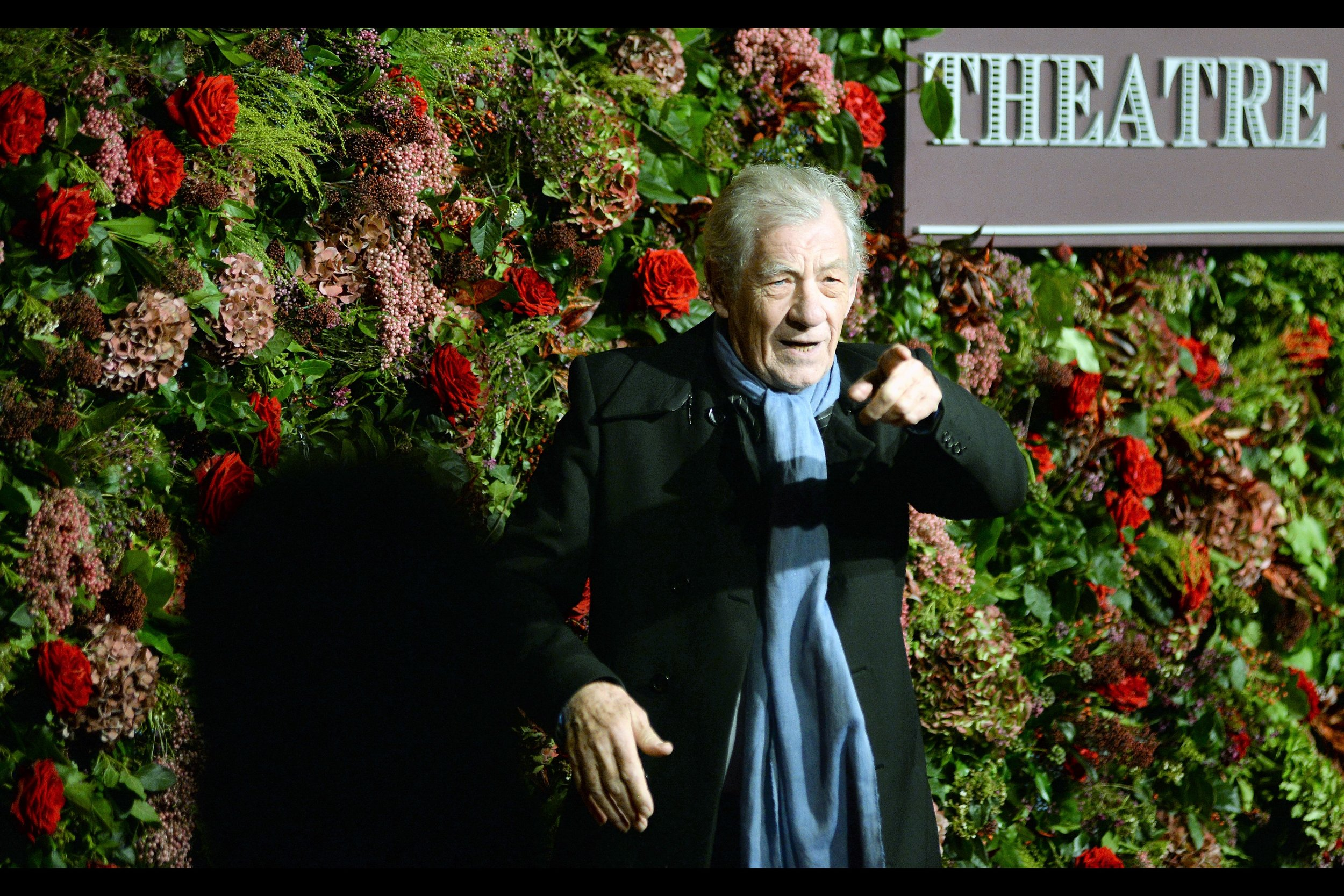"""You gotta check out this guy's website. It's frikkin' awesome"" . You just gotta straighten that finger slightly and point it two people to the left…. and you're absolutely right Mr McKellen!!"