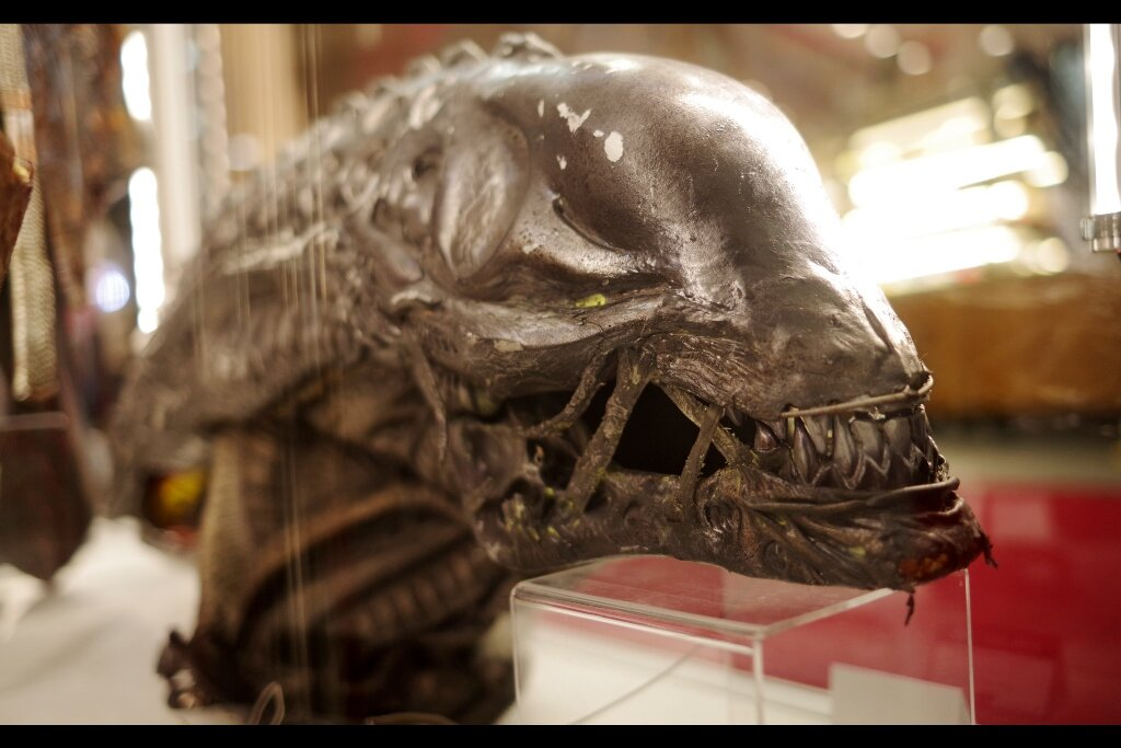 """Can you believe I once had a full head of hair??""  Xenomorph head from Aliens vs Predator : Requiem . Estimate: £3,000 - 5,000 (winning bid : £3,690)"