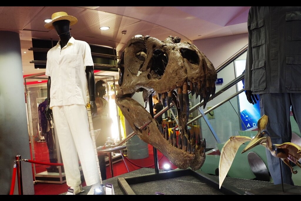 """Feedback from original owner :  """"I've been dead for over 65million years. Like I care.""""  """"Research Quality"""" T-Rex skull prop from Jurassic Park. Estimated price : £20,000 - 30,000 (winning bid : £24,600) (meanwhile, Hammond's Suit behind it : winning bid : £18,450)"""