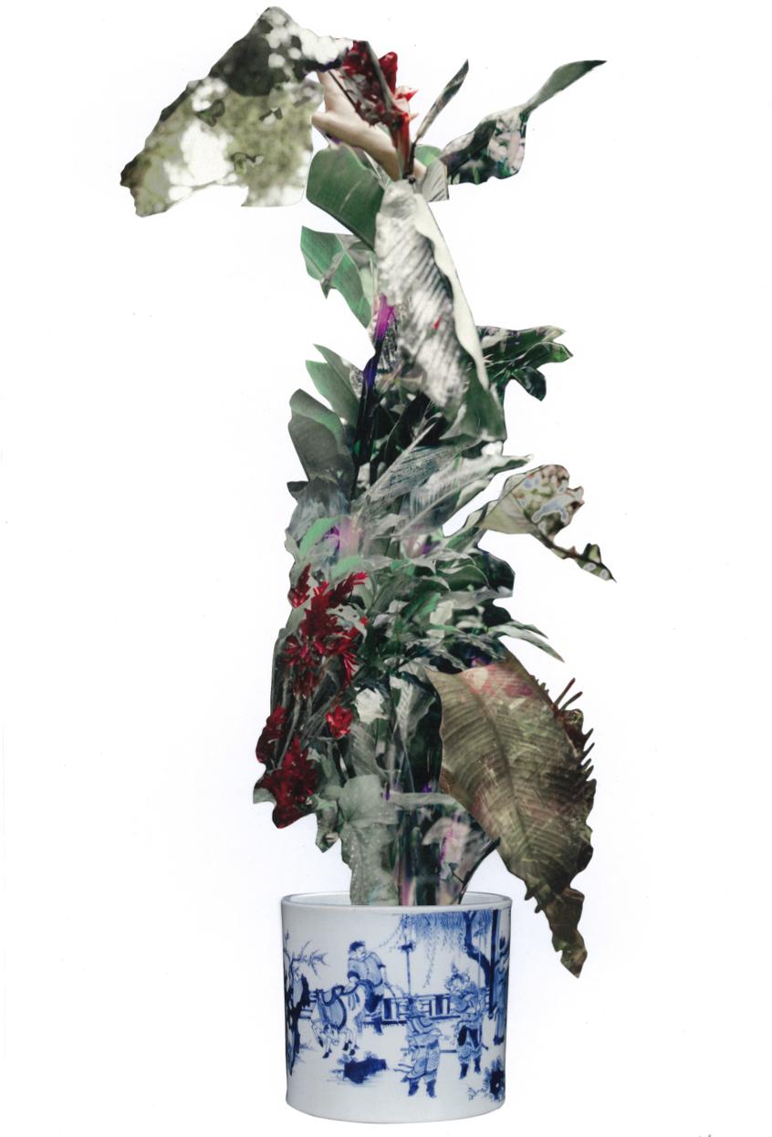 Water my body II, 2014