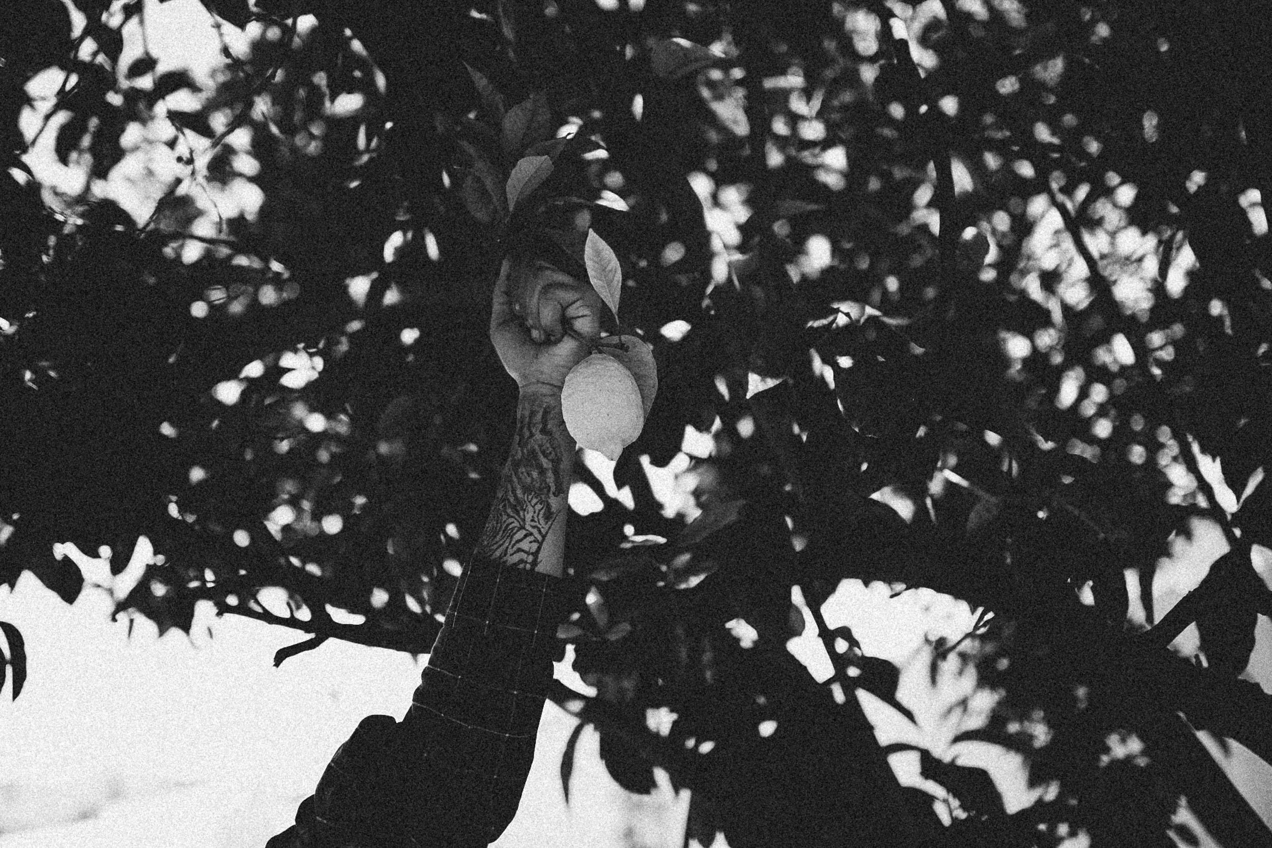 film-archive-kc.locke-14.jpg
