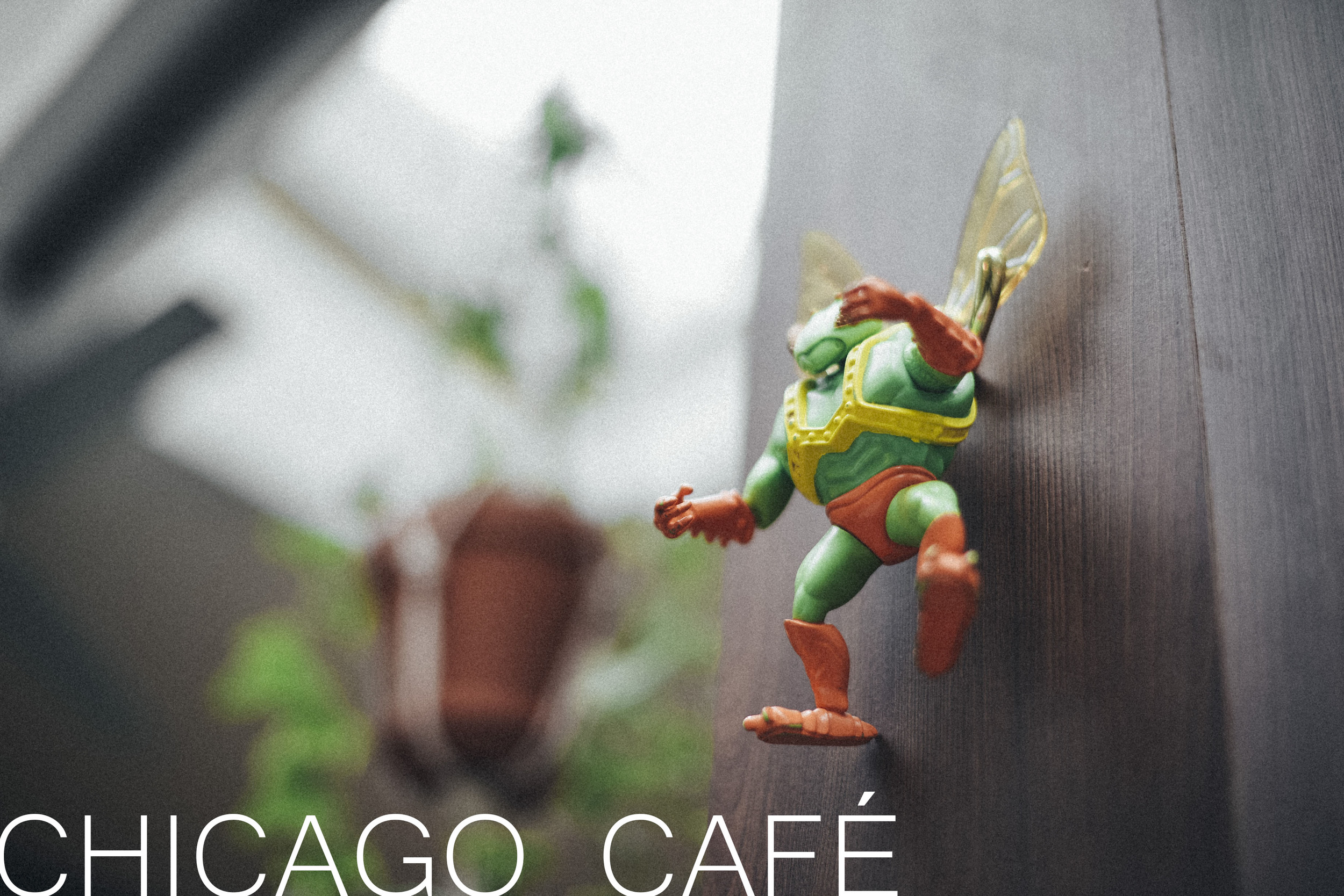 CHICAGO café brussels food and drink best place guide foodie