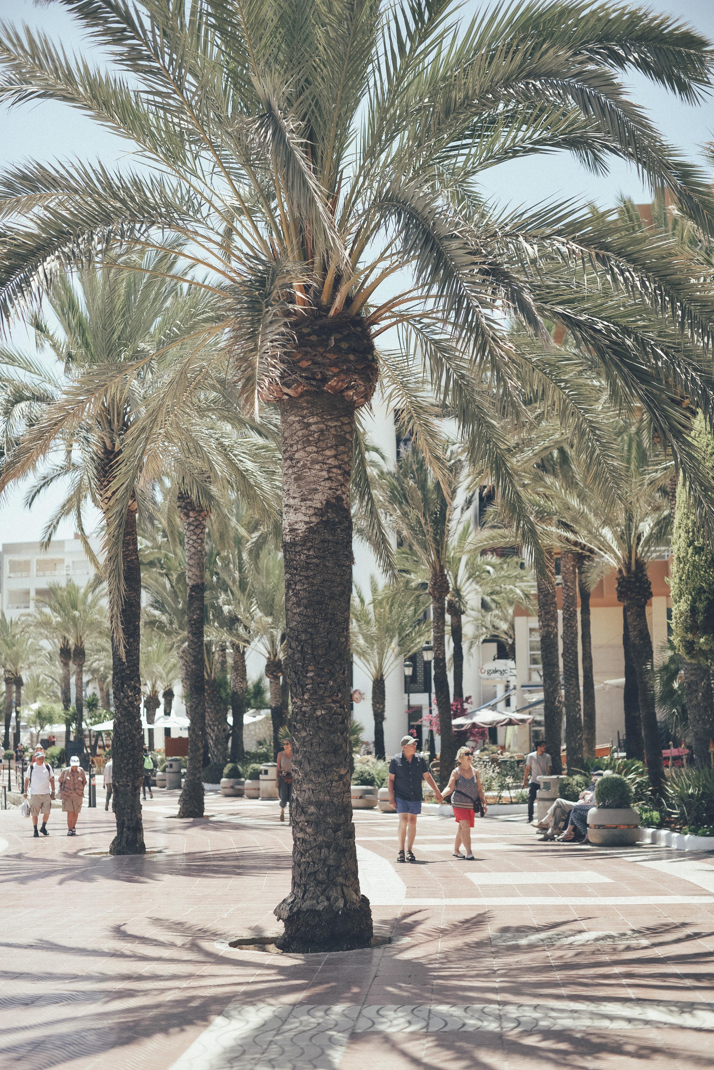 Ibiza _ Travel Fashion Blogger65.JPG