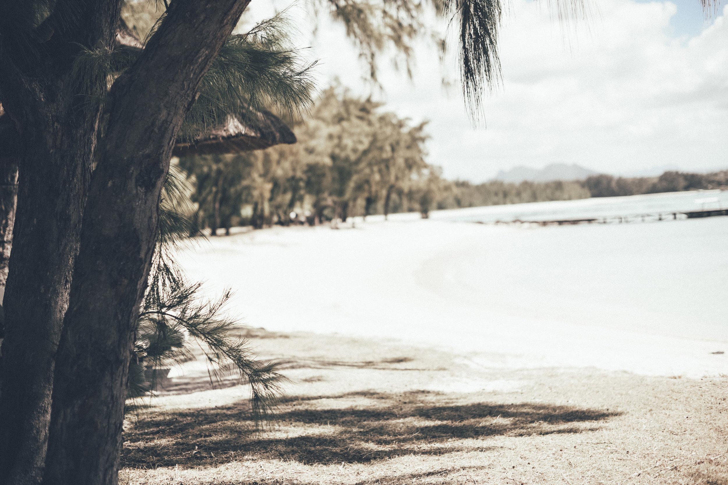 Mauritius 100.JPG
