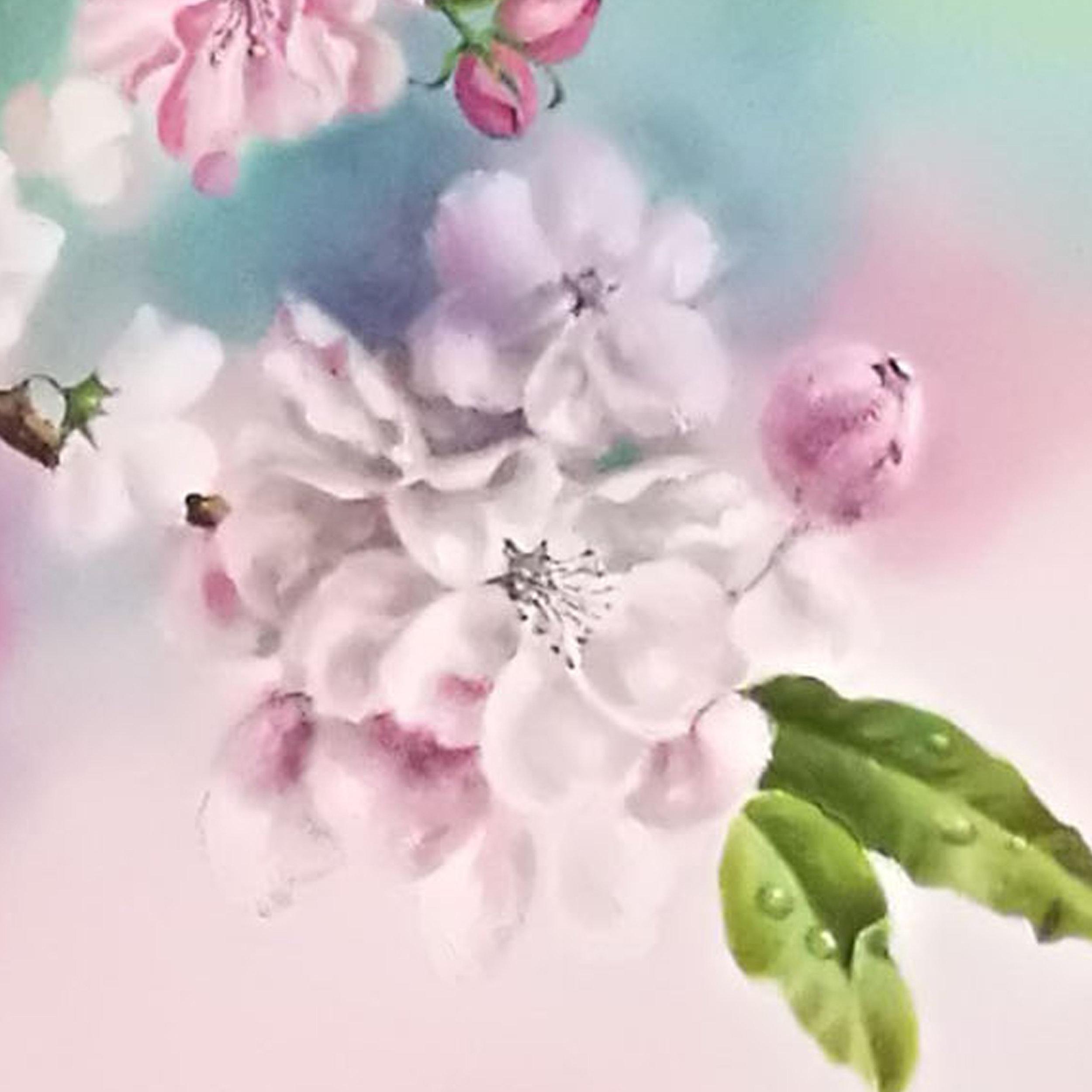 Large Apple Blossom.jpg