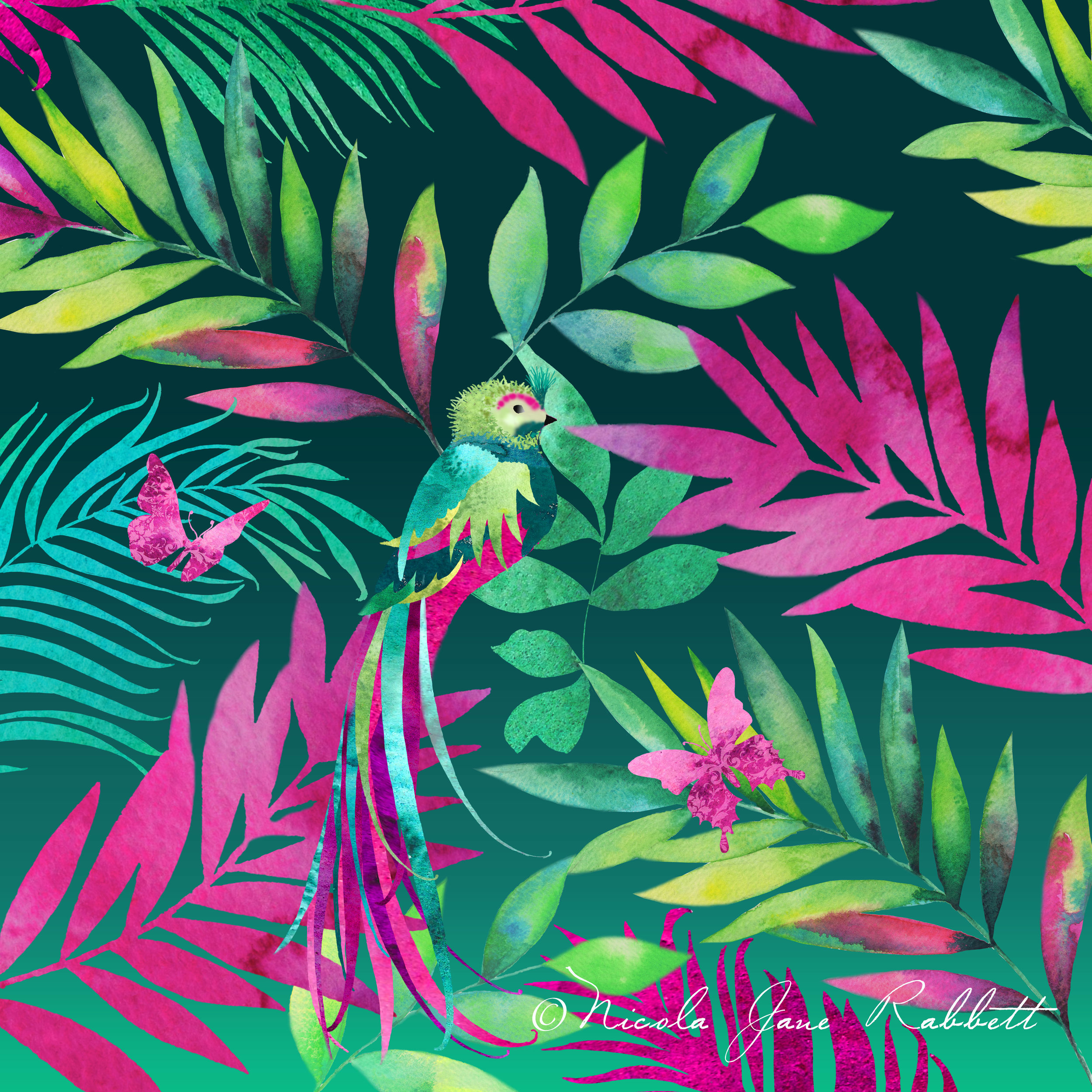 'ZanzibaR' - The first design in a new tropical inspired collection, which will be printed on soft velvet. This one features an exotic bird of paradise with watercolour palm leaves which have all been hand drawn and painted. This design will form part of my new summer collection and be available to buy as scatter cushions in the on-line store soon.