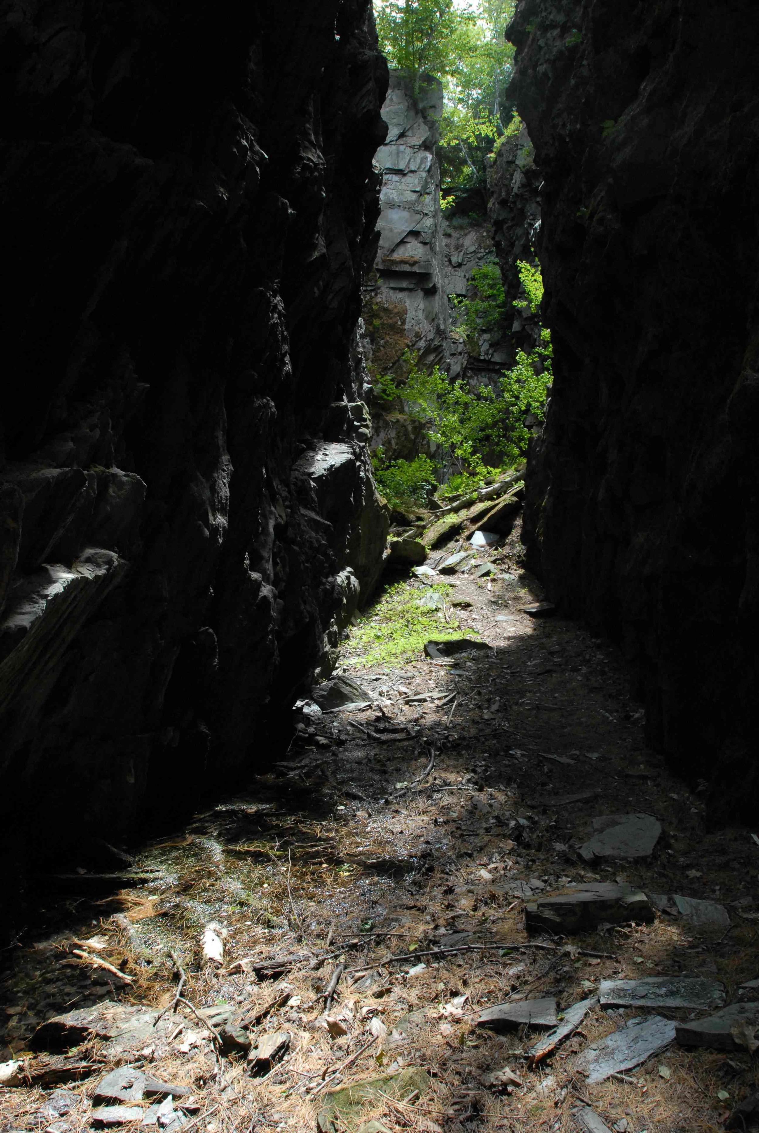 Quarry (229).jpeg