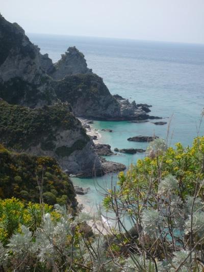 View Cliff Capo Vaticano.jpg