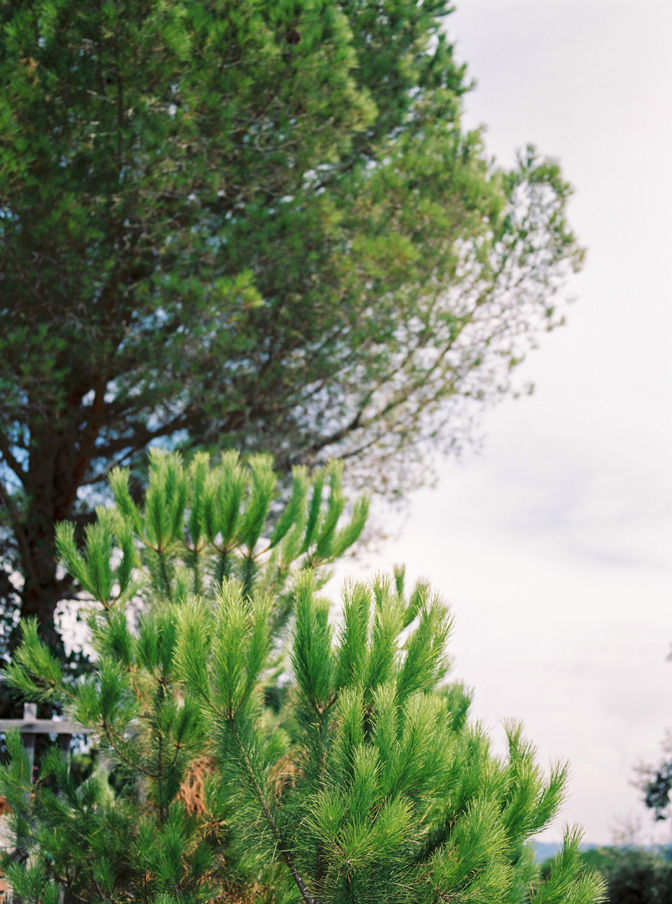 Sergio-Sorrentino-Fotografie_Il-Faro_Kelly-Wedding_0002.jpg