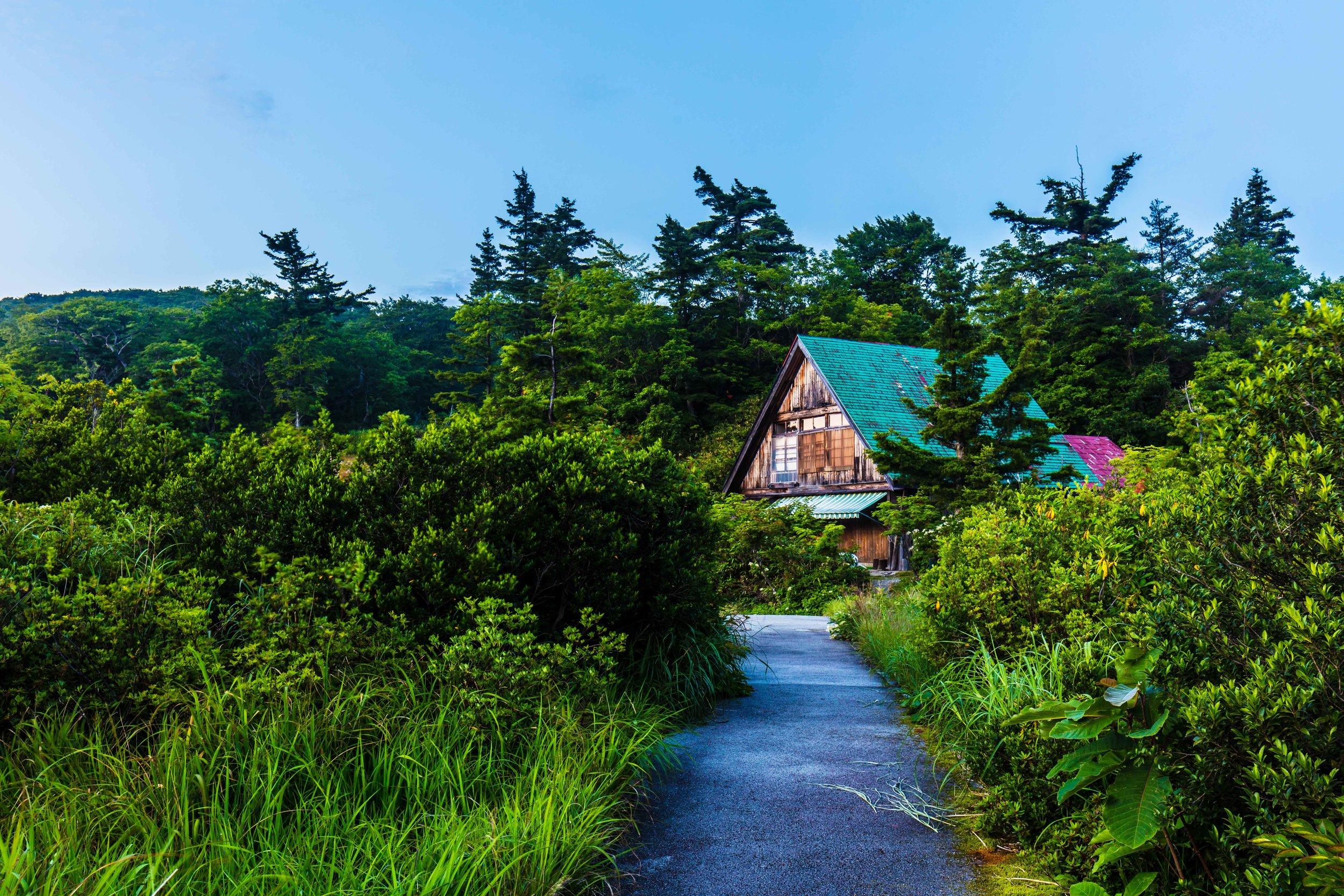 Aomori 2016 #8