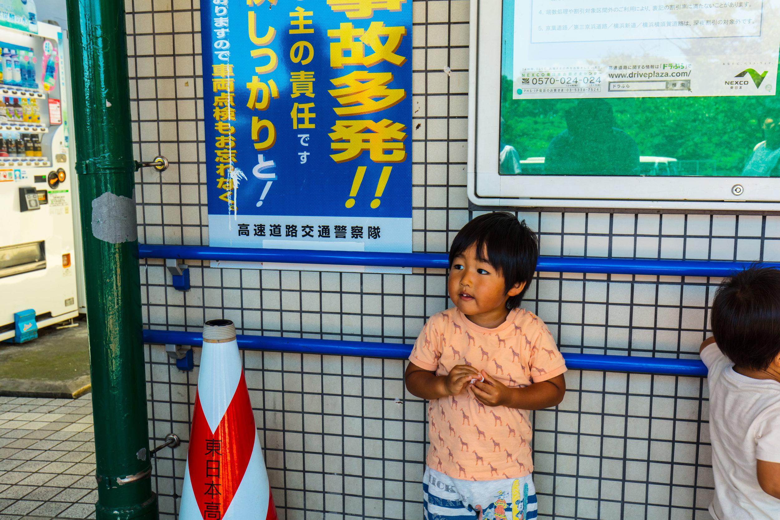 Akita 2016 #1