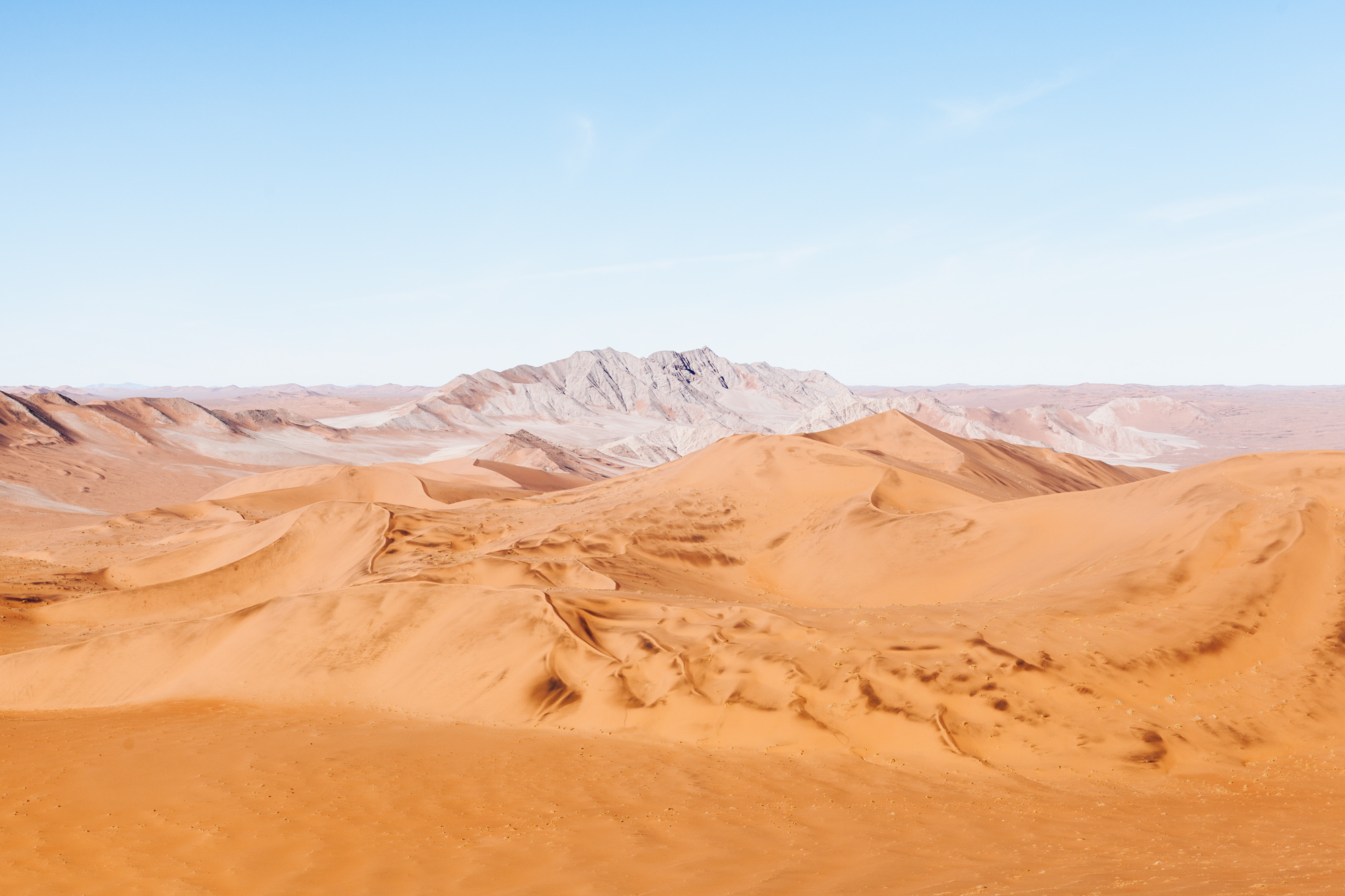 Endless views of the oldest desert in the world from the top of Big Daddy dune.