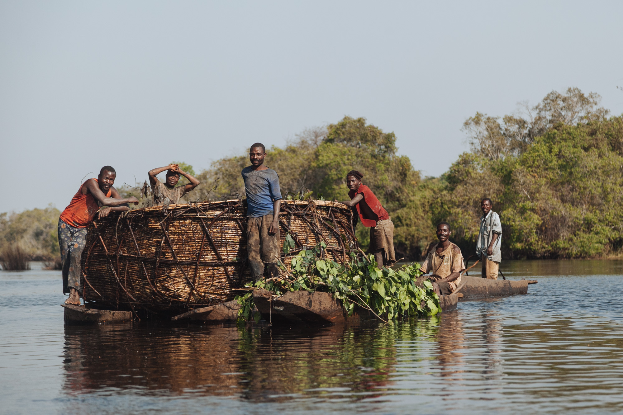 FIshermen gather vegetation to place in their fish nursery.