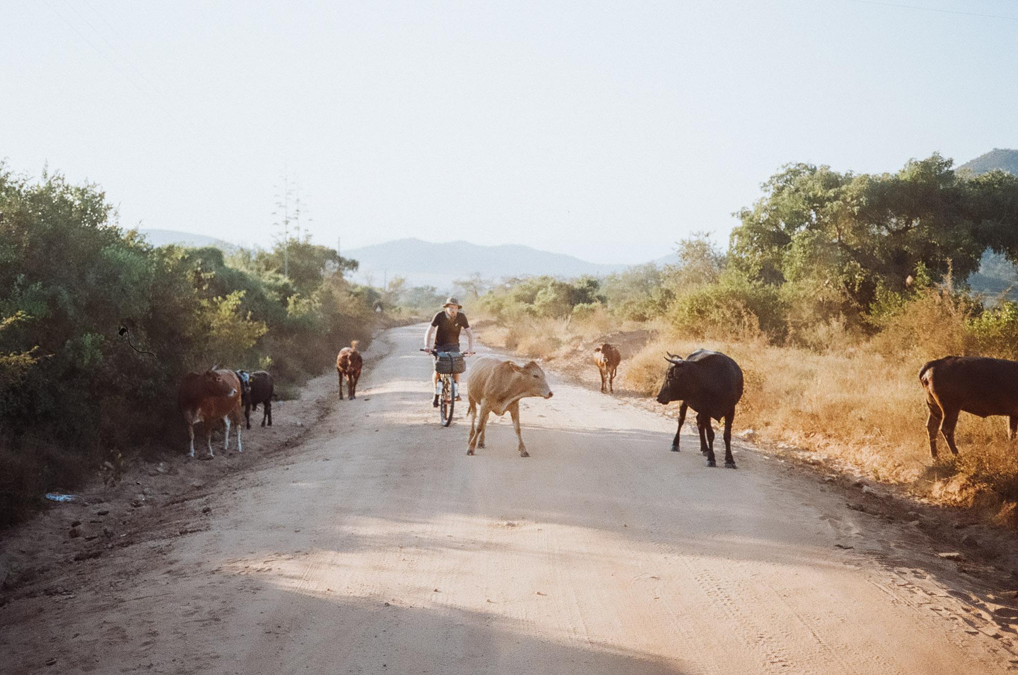 swaziland-18.jpg