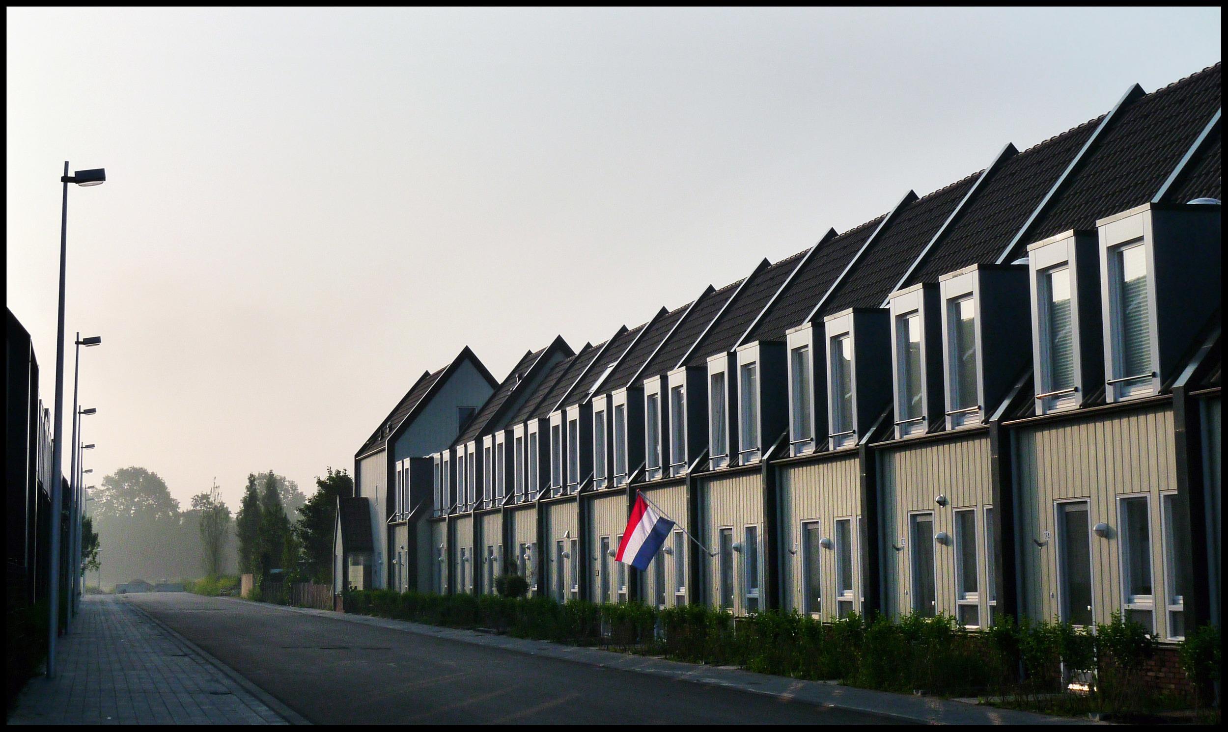 EJ-NL vlag02653k.jpg