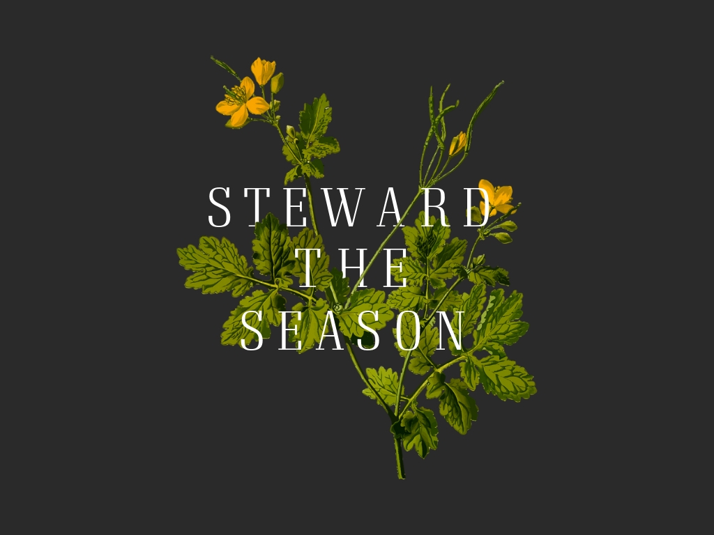Steward the Season - Title Slide.jpg