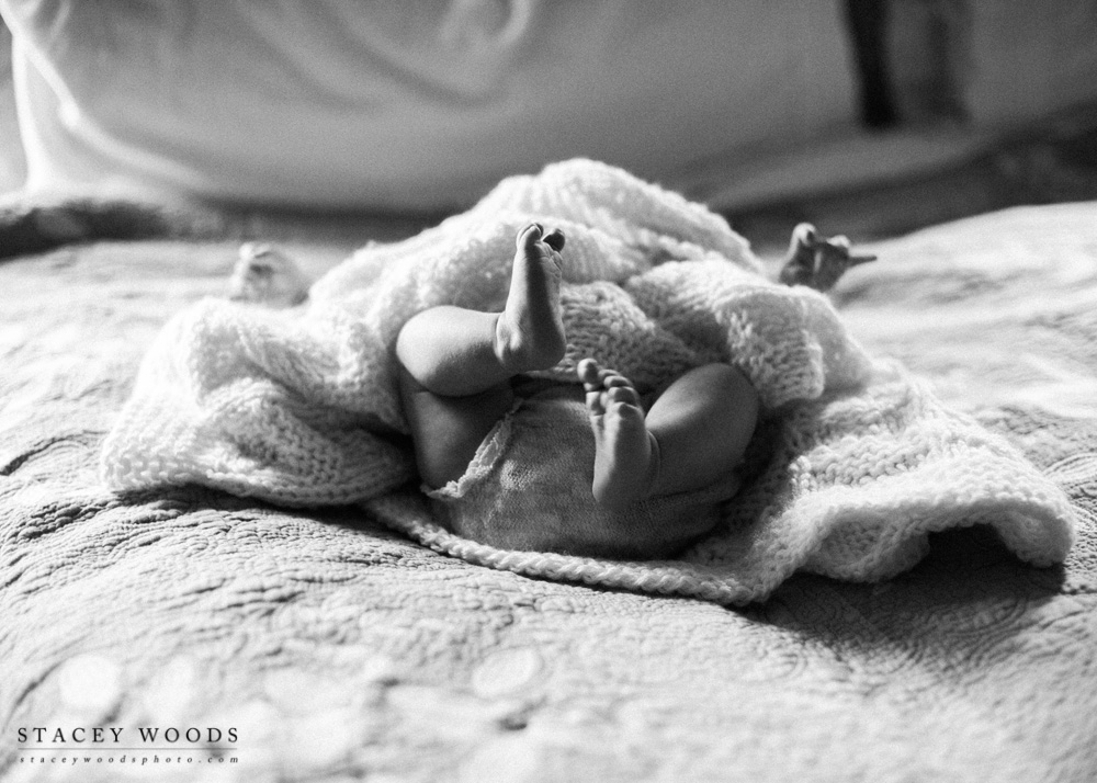 Stacey Woods Newborn Photographer