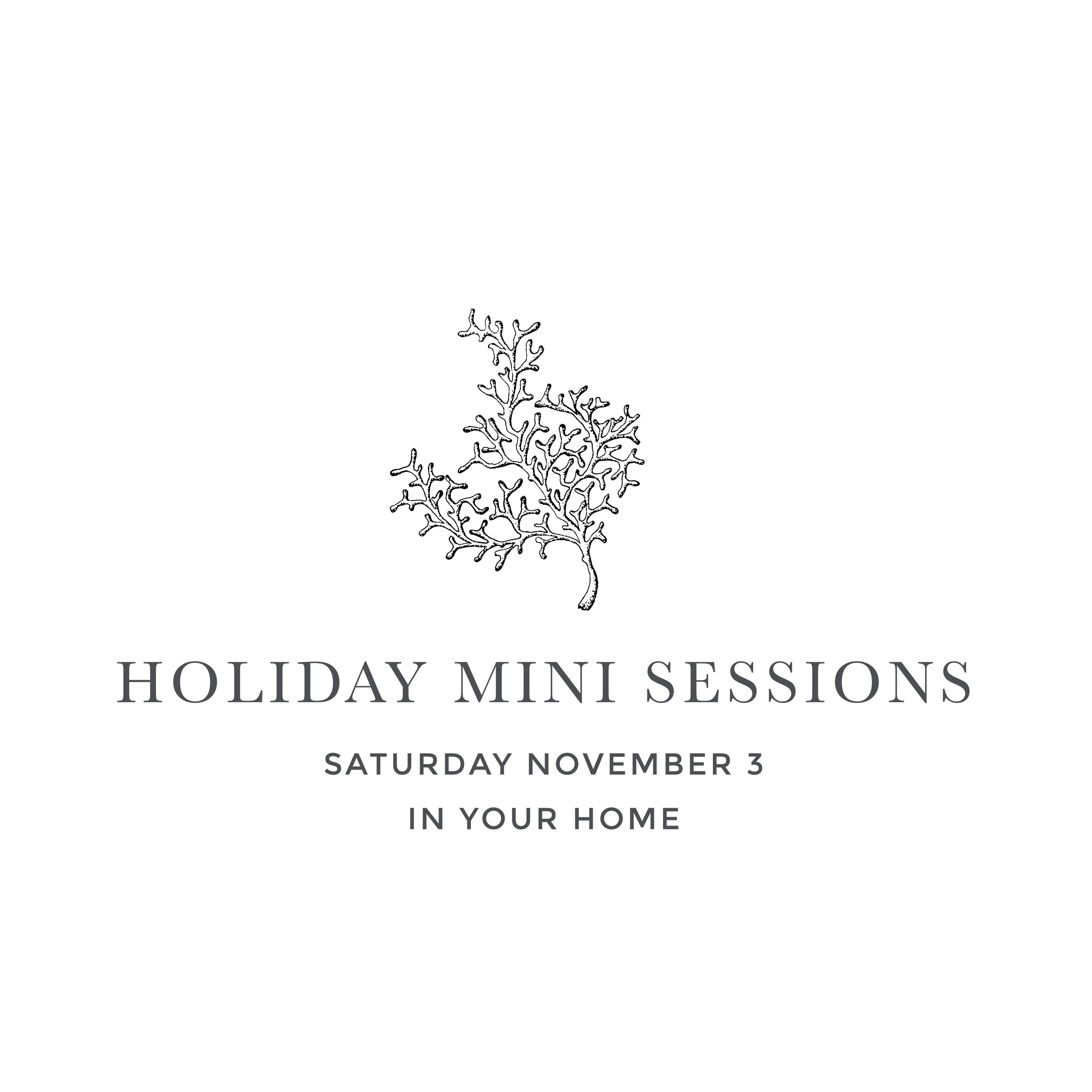 Stacey Woods Holiday Mini Sessions