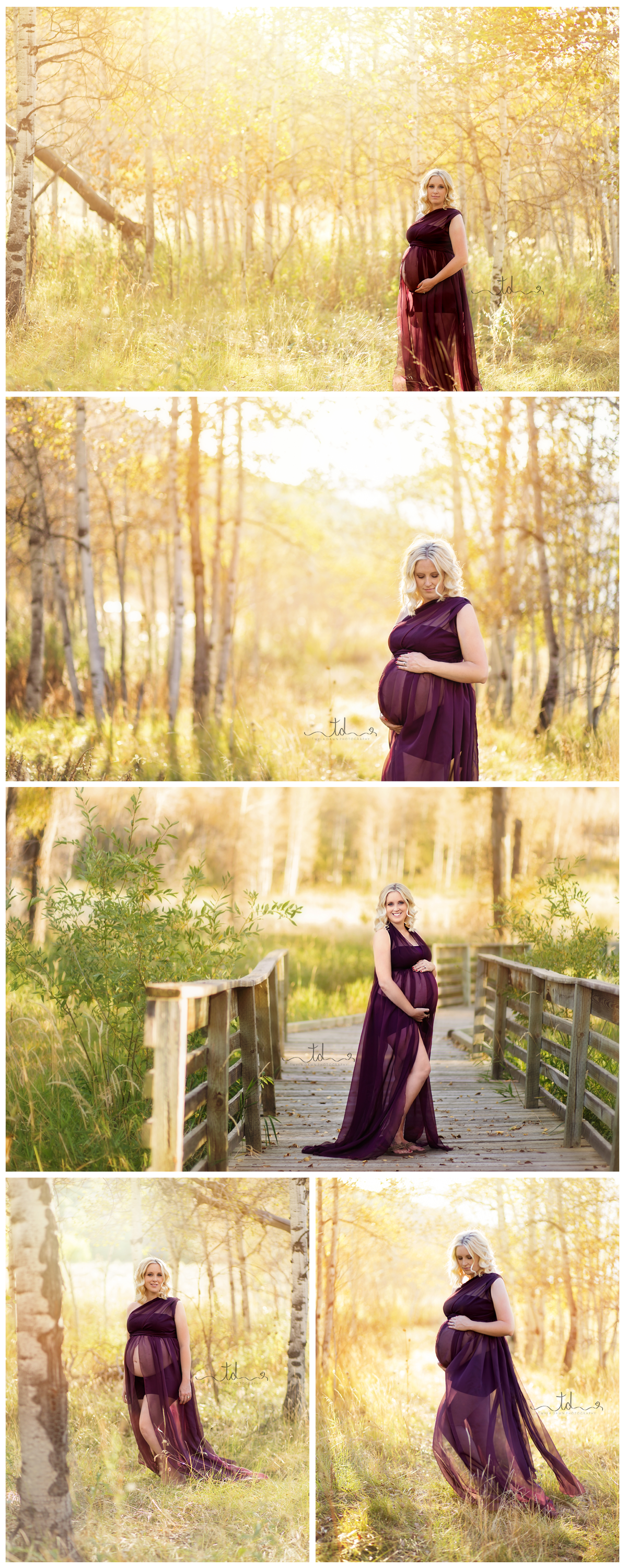 Heber Park City Utah Maternity Photographer Golden hour Session