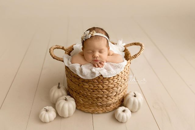 Fall is among us! Where we camped over the weekend, it got snow last night. I love sweater weather 🍂 . . . . #newborn #utahnewbornphotographer #newbornposing #fall #pumpkin #parkcitynewbornphotographer #parkcityphotographer #newbornstudio #hebercitynewbornphotographer #hebercityphotographer #saltlakenewbornphotographer #saltlakecitynewbornphotographer #saltlakephotographer #newbornphotography #babies #babiesofinstagram #fallbabypictures