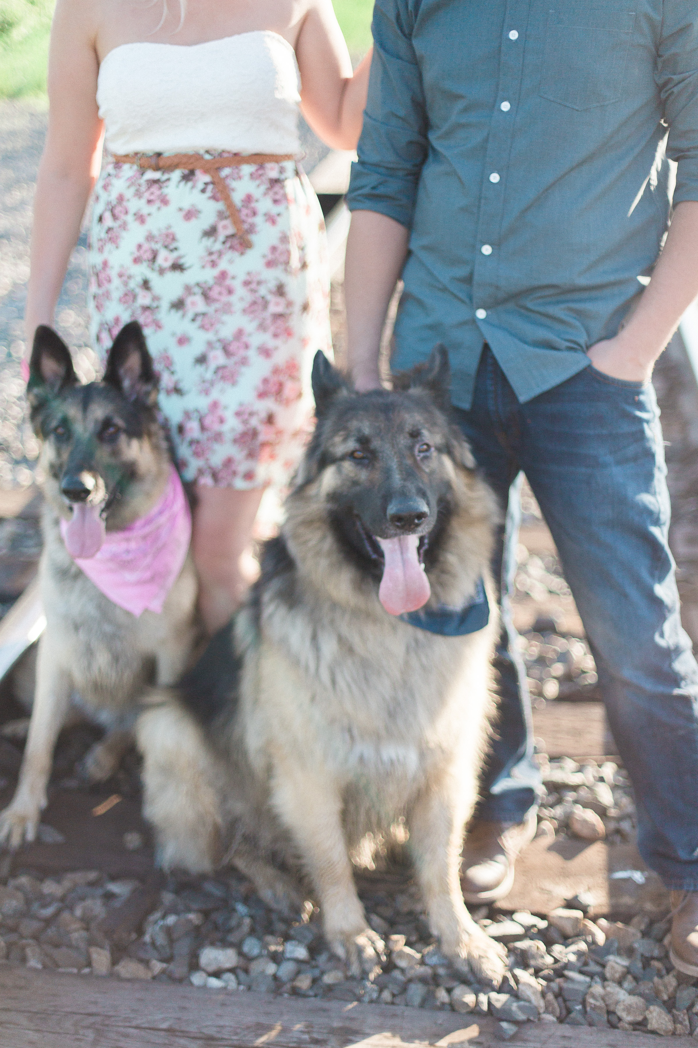 Bringing your pet to your engagement session - Keila Marie Photography