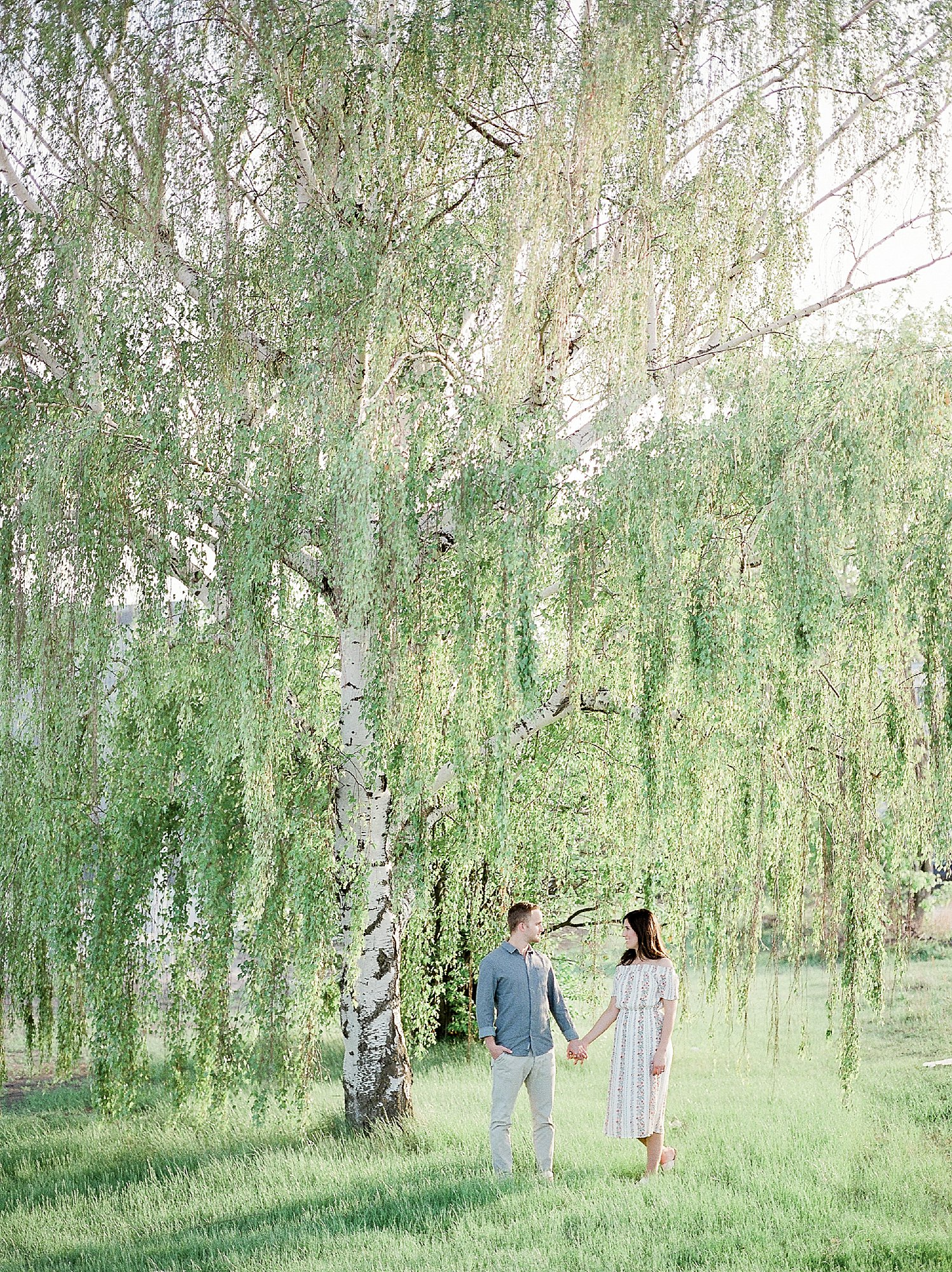 Engagement Photos under Weeping Birch Tree, Winnipeg Wedding Photographer, University of Manitoba photoshoot, Summer outfits for engagement session