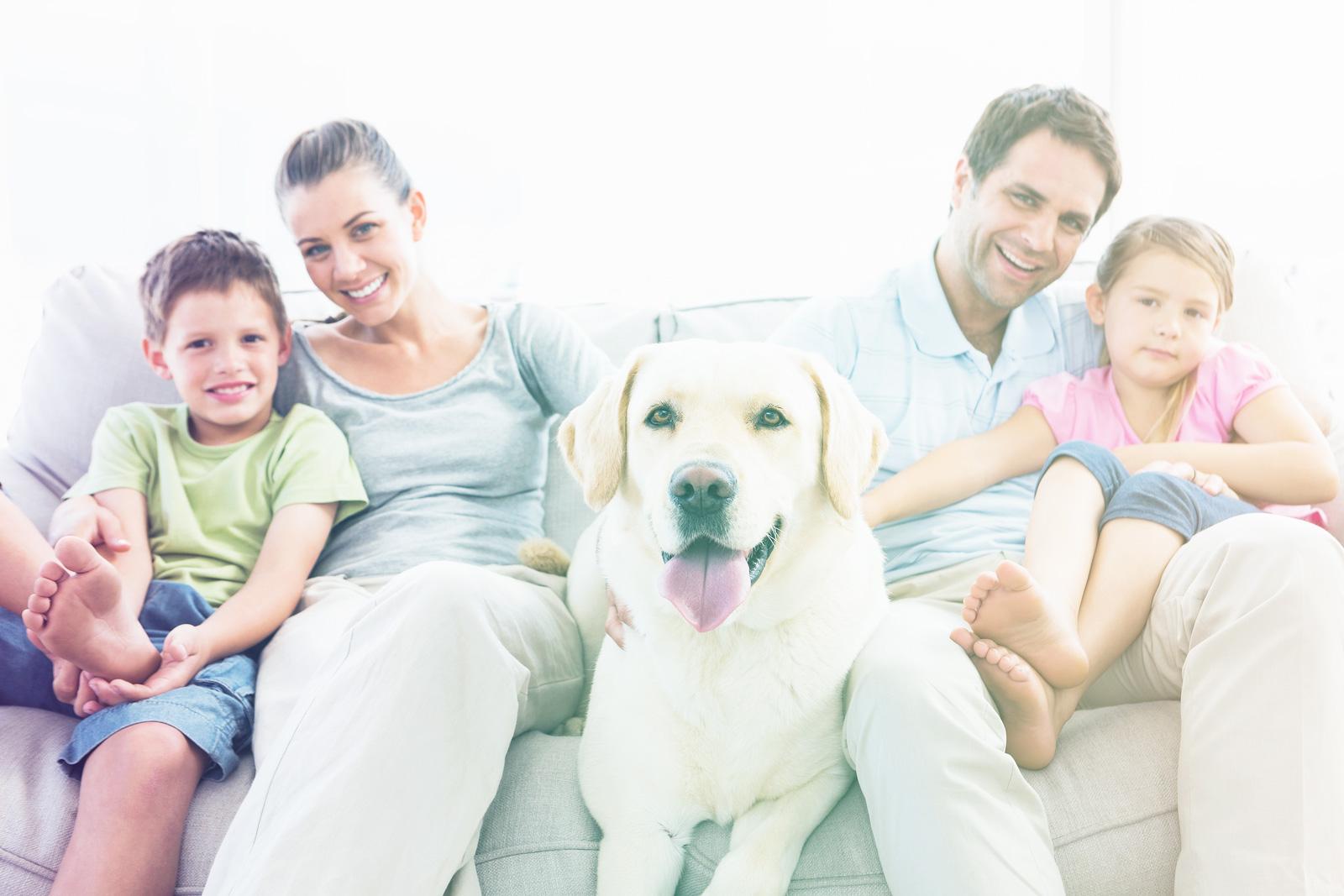 who-family.jpg