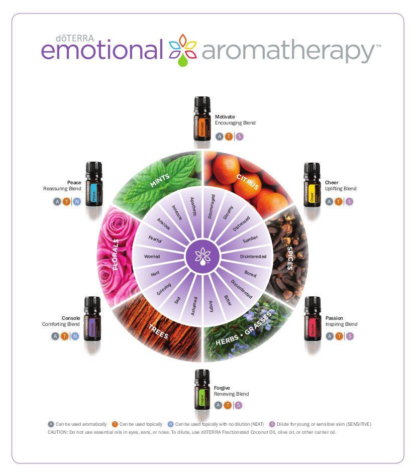 Emotional_Aromatherapy_Wheel.jpg
