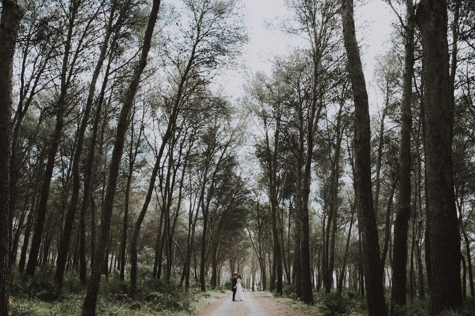 postboda en montellano - Sevilla - bosque - montaña - fotógrafo Andrés Amarillo.jpg
