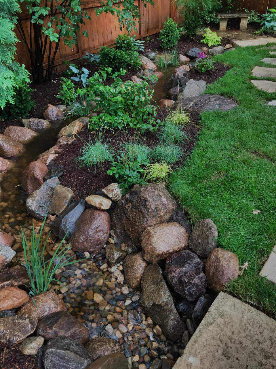 Sedges, Astilbe, Diervilla, Siberian Iris