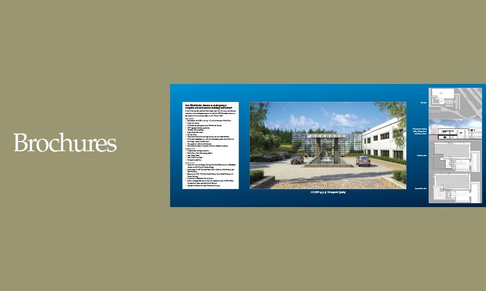 Brochures-4 copy.png