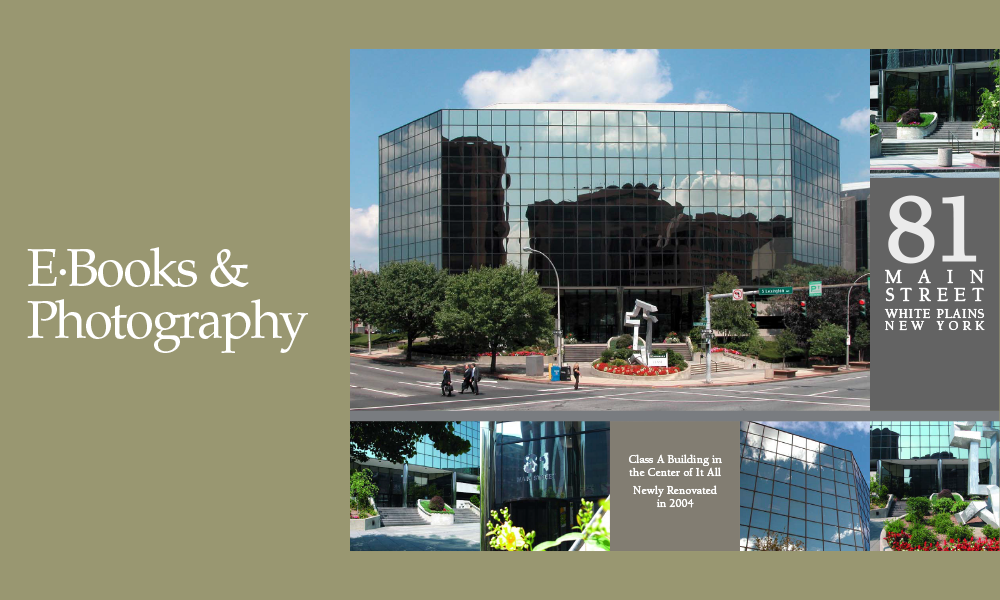 EBooksPhotos-1d copy.png