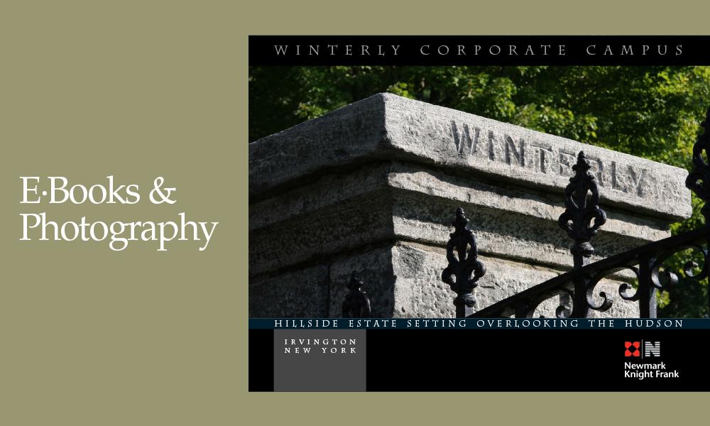 EBooksPhotos-1e copy.png