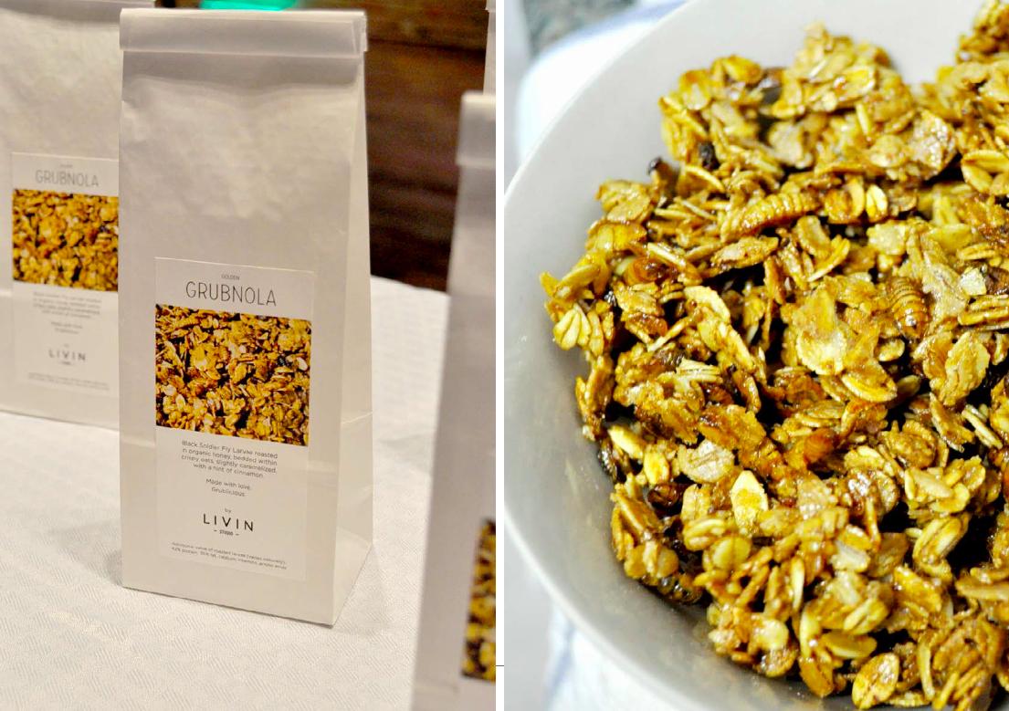 "Yum again! Larvae Granola ""Grubnola"", initially developed for Future Food Salon 2014 in Austin, TX"