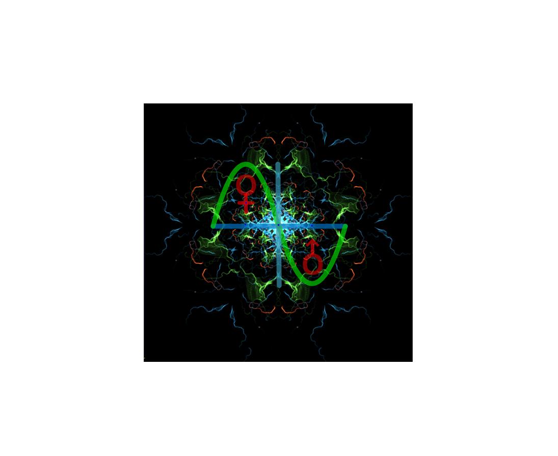 Meta-Religion — The Supra-Intelligent Design