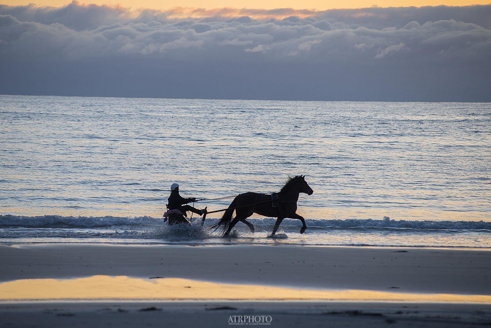 Midnight Sun Horse riding in Hov