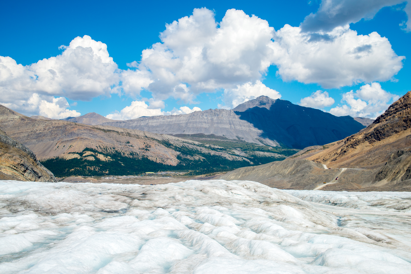 Walking on the Athabasca Glacier