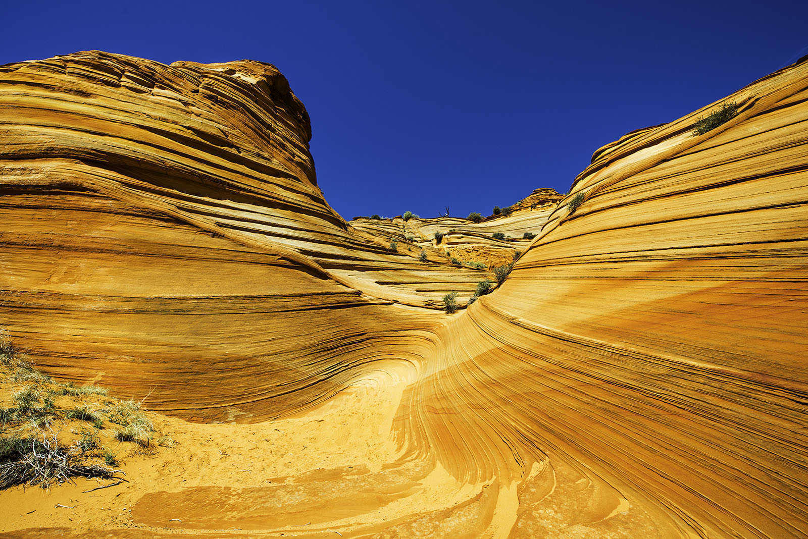 """This is not """"The Wave"""" but similar looking red rock in Coyote Buttes South."""