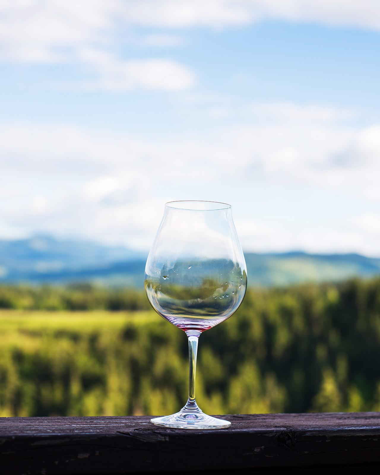 Wine and Mt. Hood.jpg