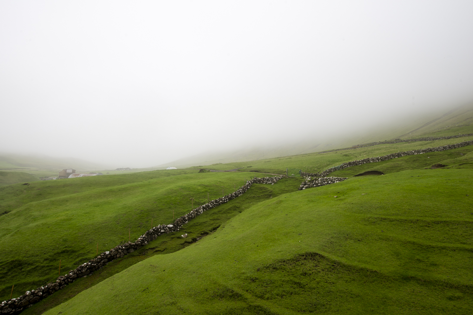 Very dense fog is daily.