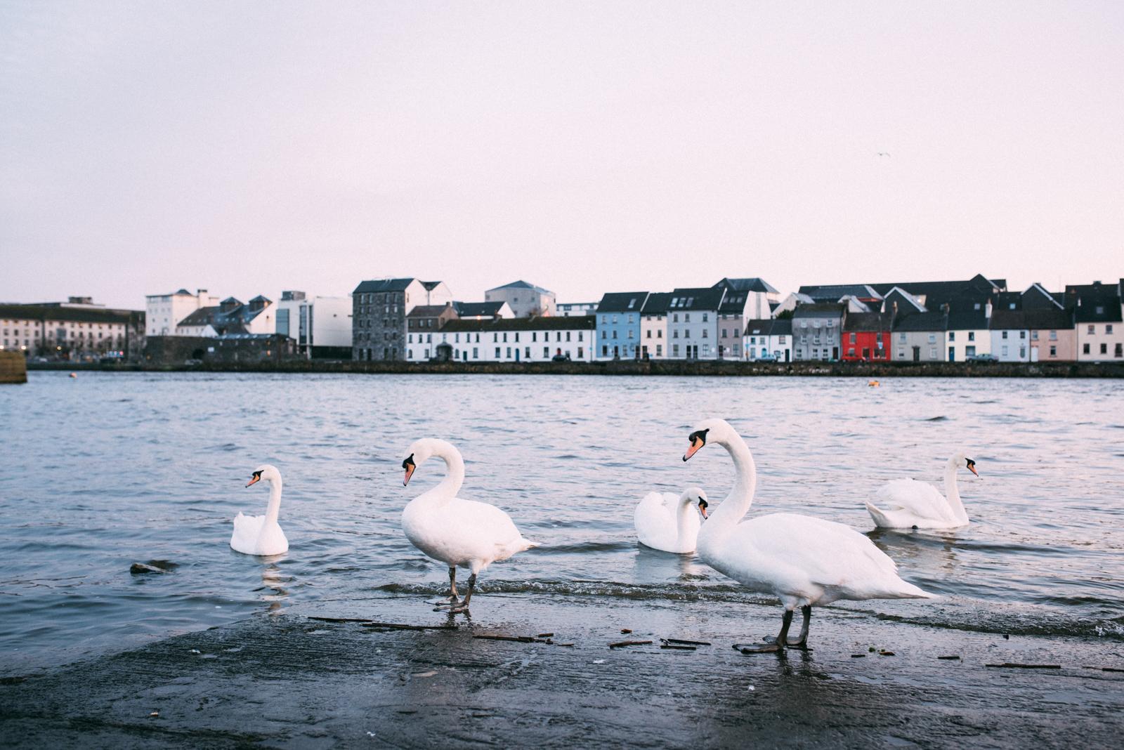 Ireland_473.JPG