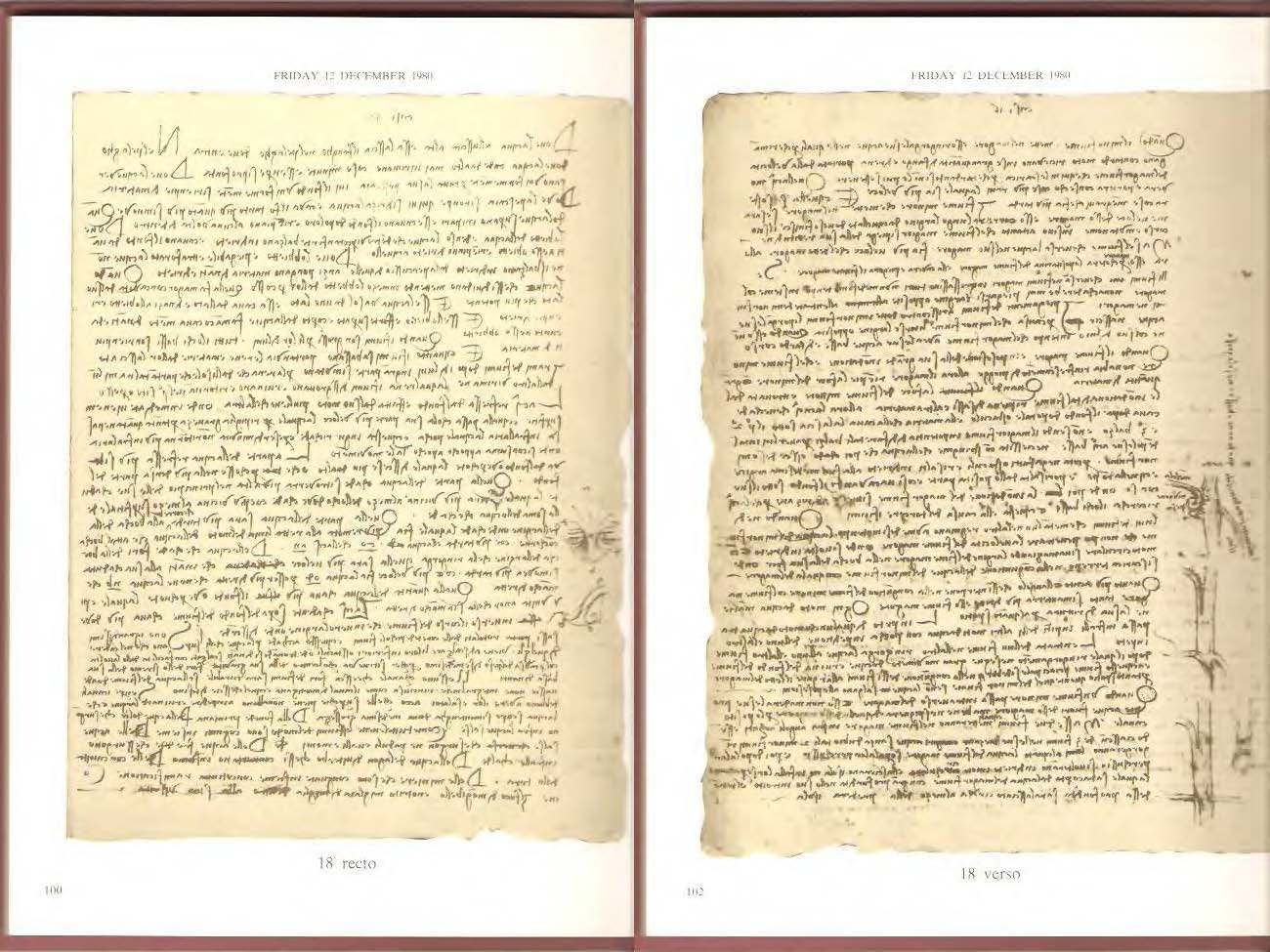 Codex_Leicester_Page_19_Image_0001.jpg